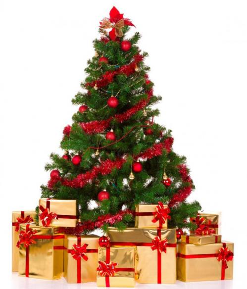 the department of public works dpw encourages city residents to recycle their live not artificial christmas trees - Christmas Tree Removal