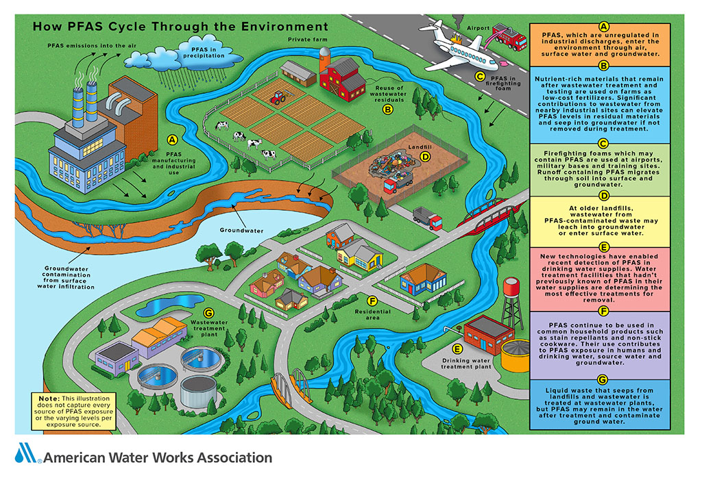 Infographic: How PFAS Cycle Through the Environment